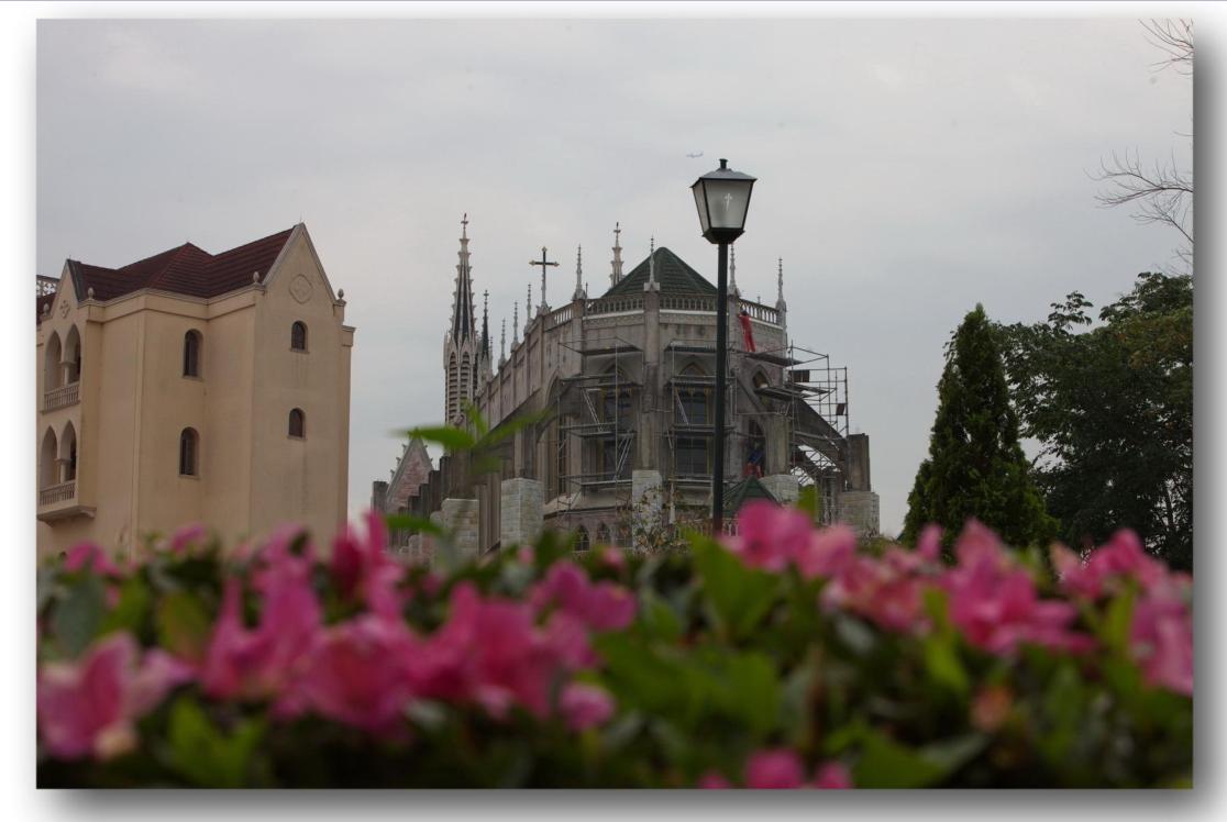 chiesa-del-centro-mariano-degli-araldi-del-vangelo-14